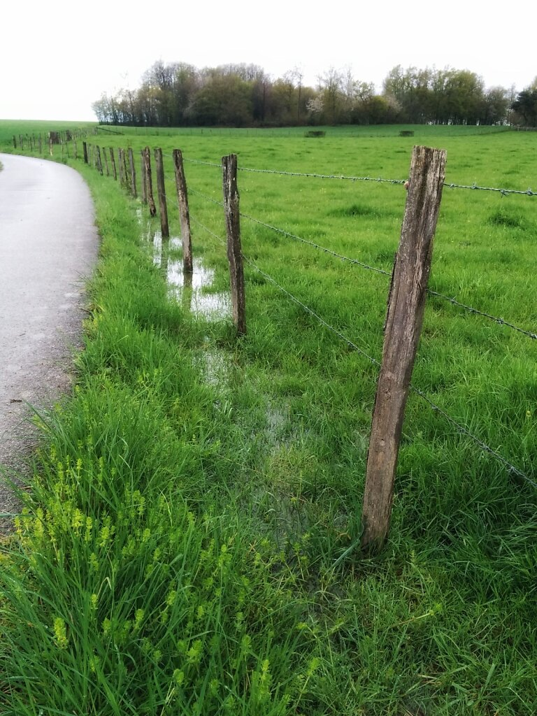 Je crois qu'il a plu. #Rain #countryside