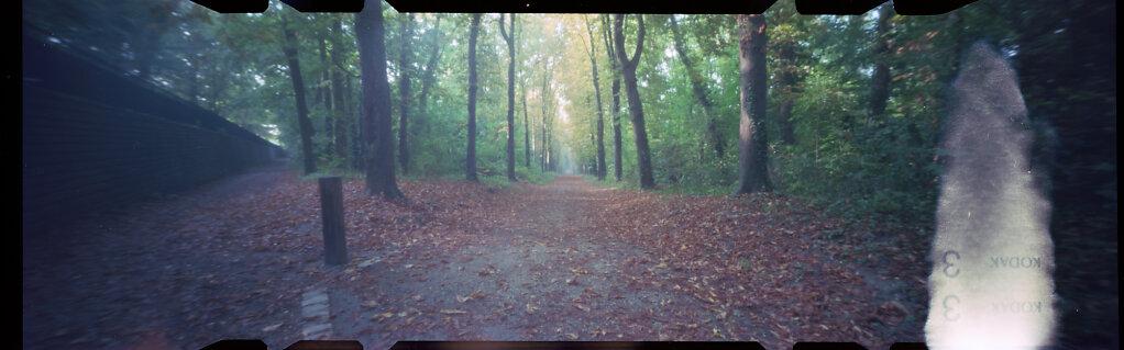 20 minutes dans les bois