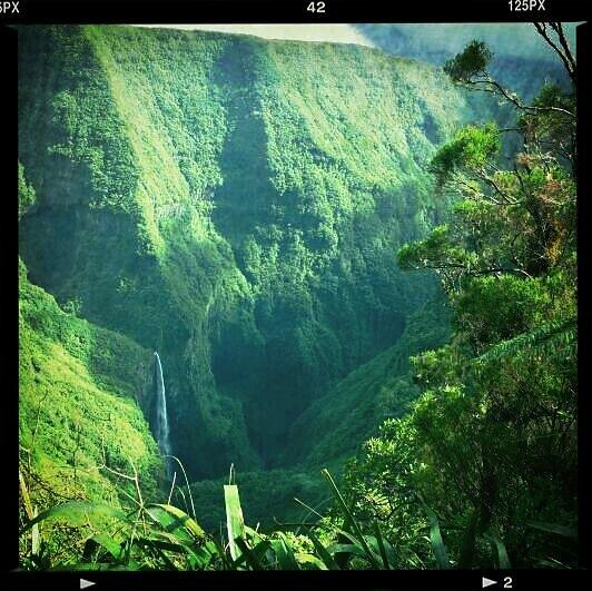 Le Trou de Fer #la Réunion  #moutains