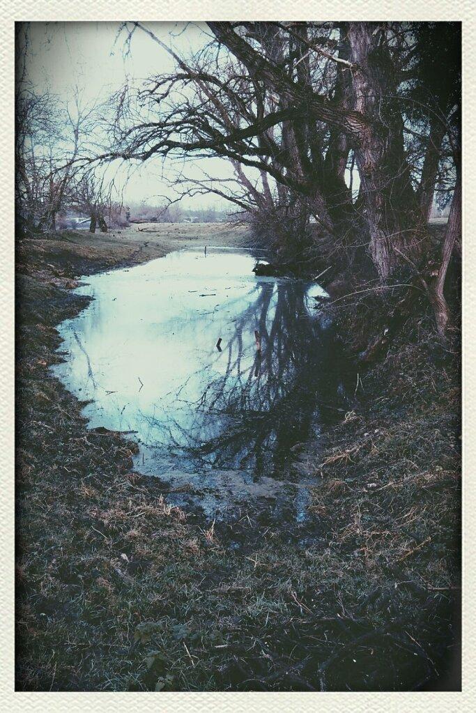 reflets #Reflection #Pond