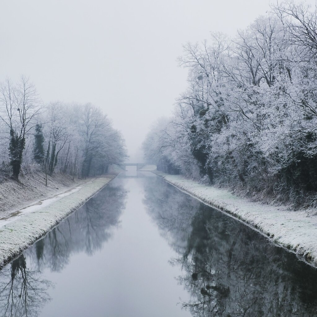 Frost #canal #Winter
