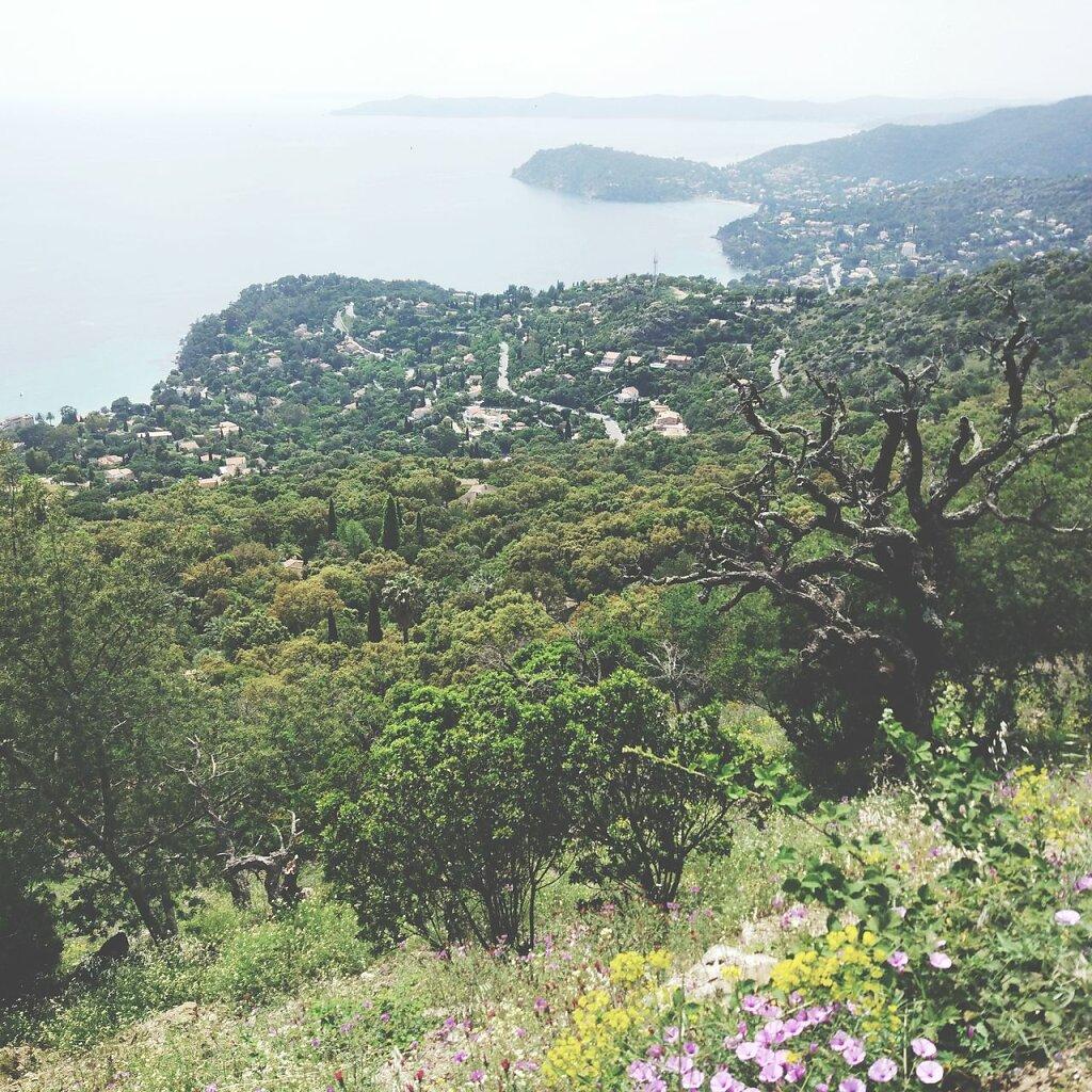 Dur de trouver des singles intéressants quand on connait pas mais au moins il y a la vue #Côte d'Azur #lavandou #mer #Montagne #VTT #MTB #Méditerranée