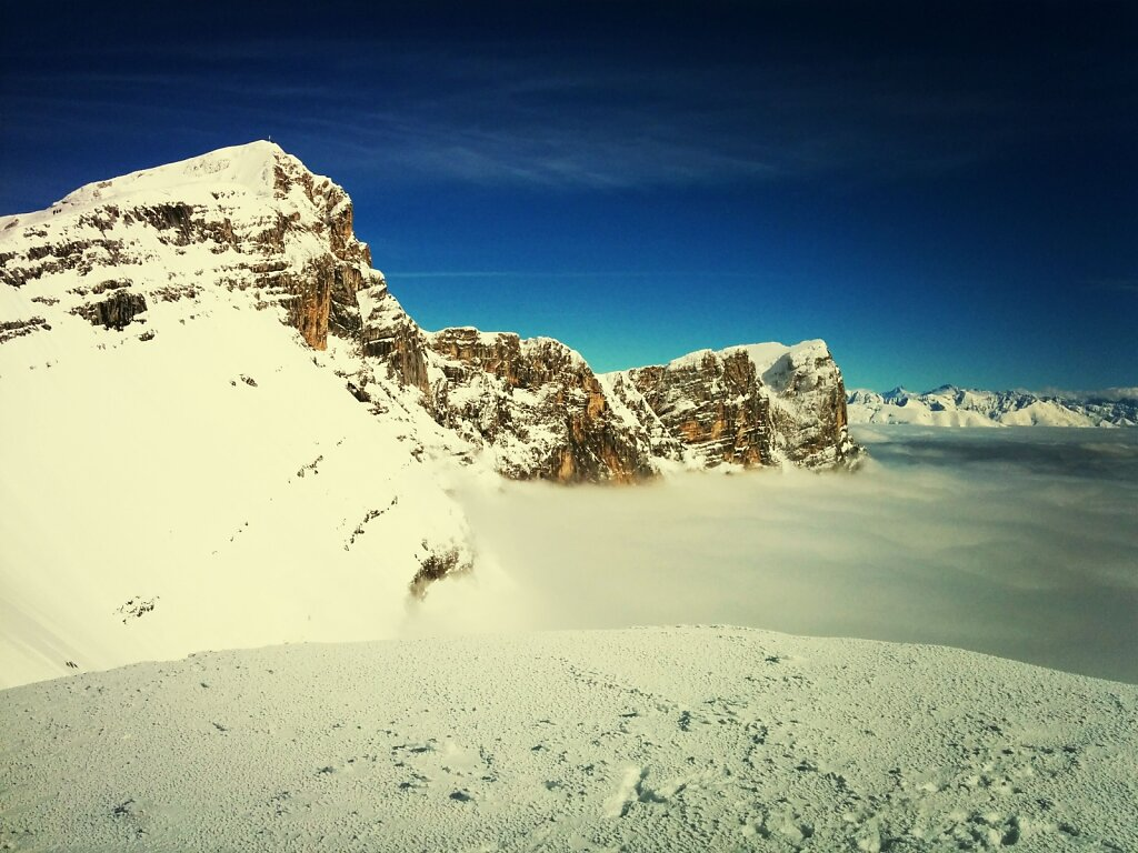 La grande moucherolle #Montagne